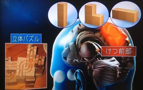 藤井聡太四段の将棋脳を育んだ3歳から遊んだ立体積木パスルキュボロ1