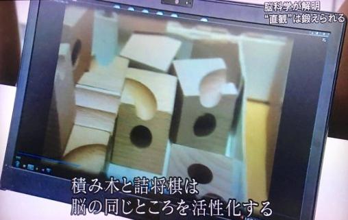 藤井聡太四段の将棋脳を育んだ3歳から遊んだ立体積木パスルキュボロ2