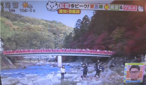 岐阜県の紅葉狩り・紅葉スポット【香嵐渓】