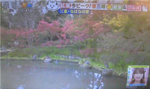日本の全国的に有名な紅葉・イルミネーションで有名な【なばなの里】の紅葉(鏡池など)
