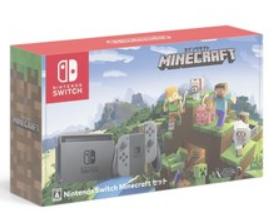 Switch Minecraftセット
