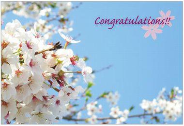 ハート【卒業祝い用メッセージカード】写真桜